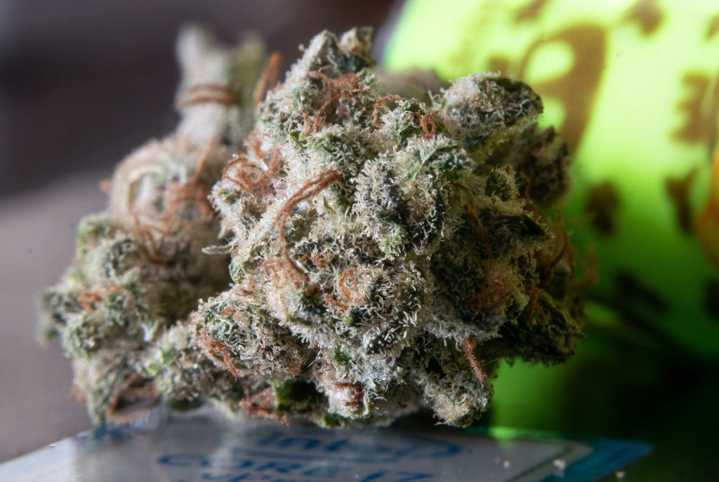 What is THC Delta 8?