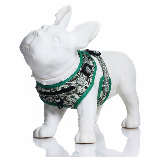 HeadyPet Dog Harness 🐶 - Affordable vaporizers and quality glass bongs, water pipes, dab rigs and more at the best online headshop - CaliConnected