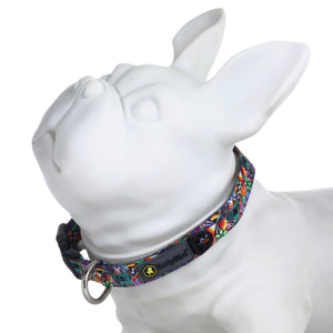 HeadyPet OG Pet Collar 🐶, CaliConnected Online Smoke Shop
