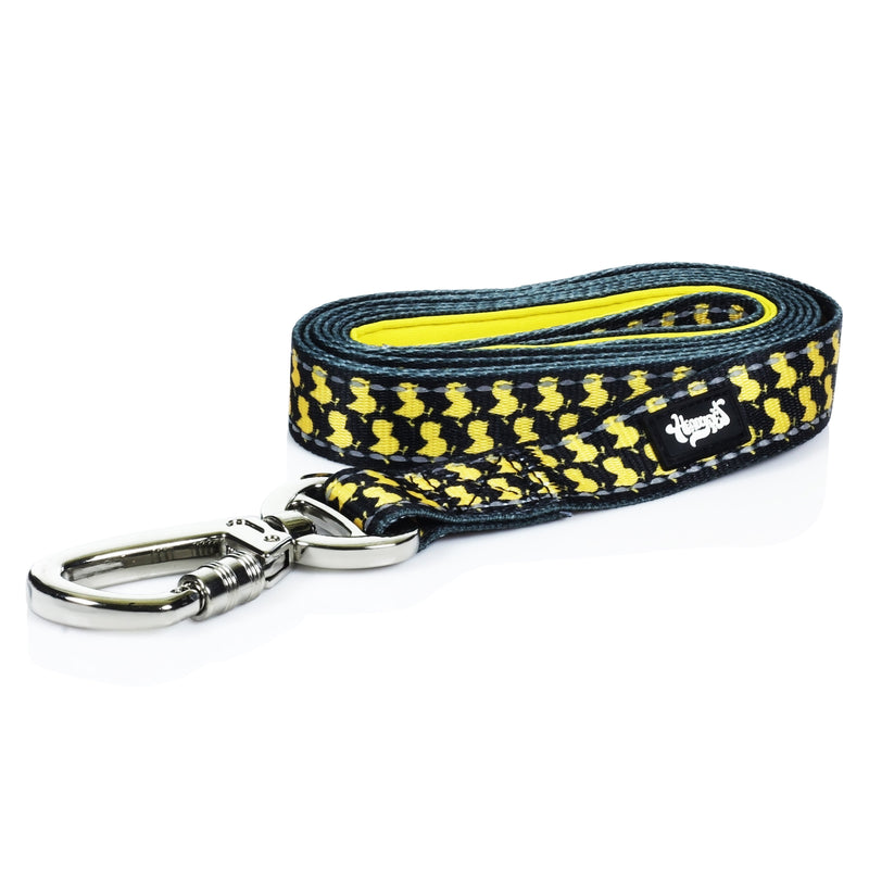HeadyPet 6 Foot Pet Leash 🐶