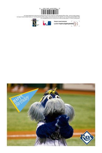 MLB Tampa Bay Rays Raymond Mascot Birthday Card