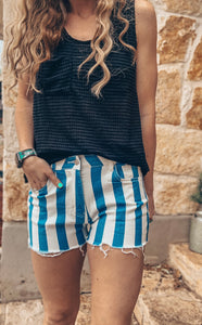 The Sarco Stripe Shorts (Blue)