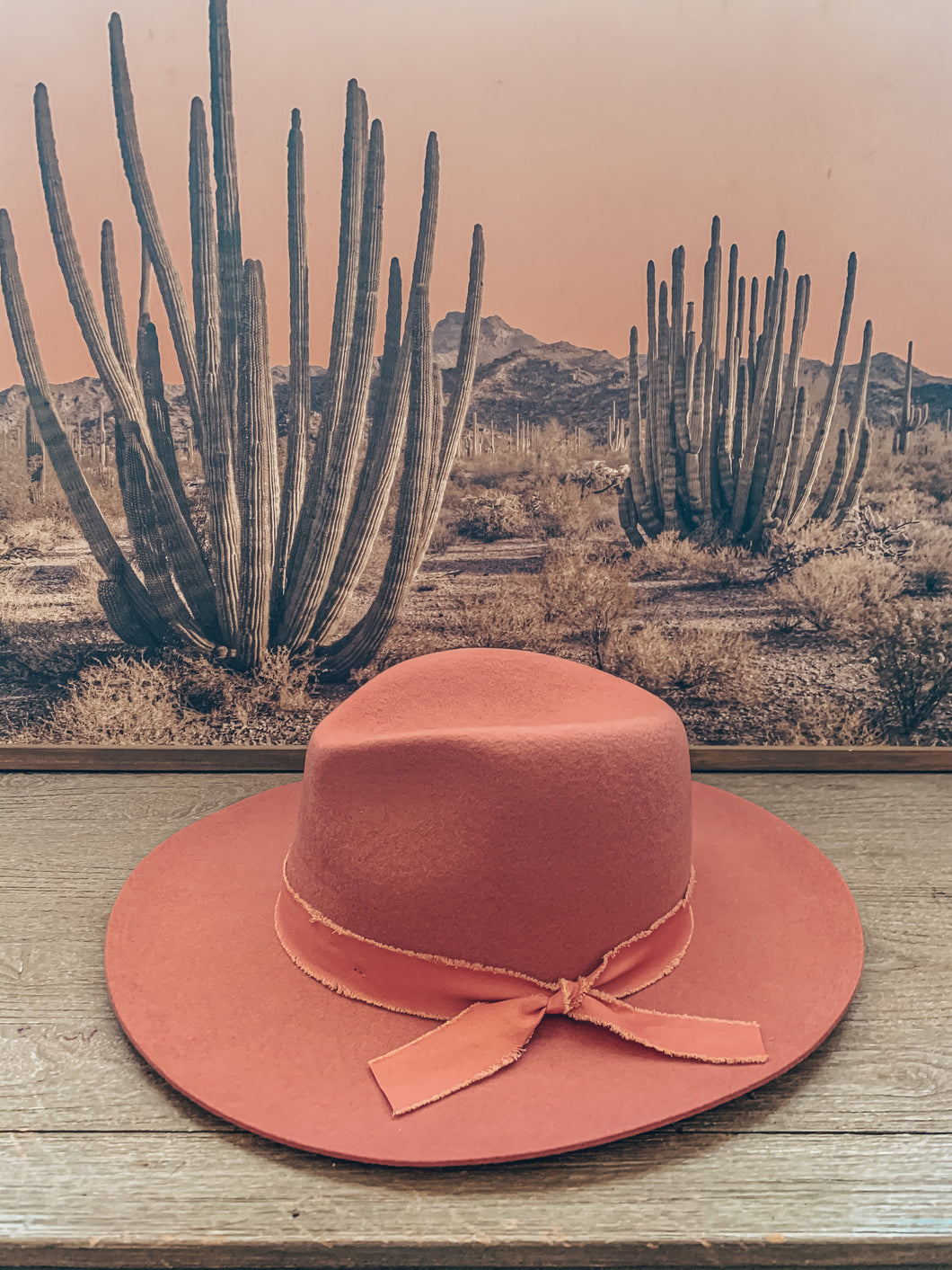 Butch Cassidy Felt Hat (Pink)