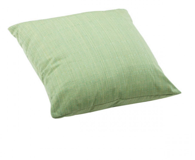 Parrot Large Outdoor Pillow Lime