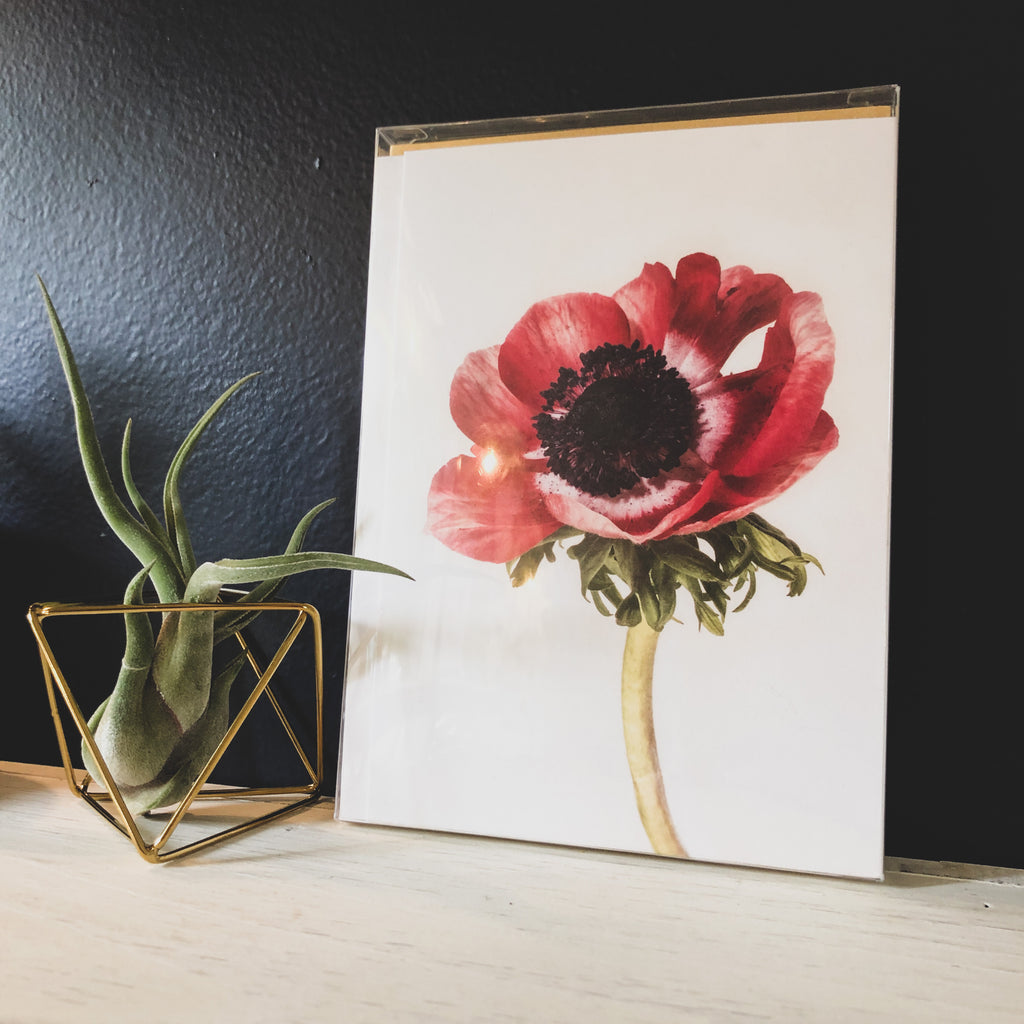 TALFOTO STUDIO // Floral Card Set