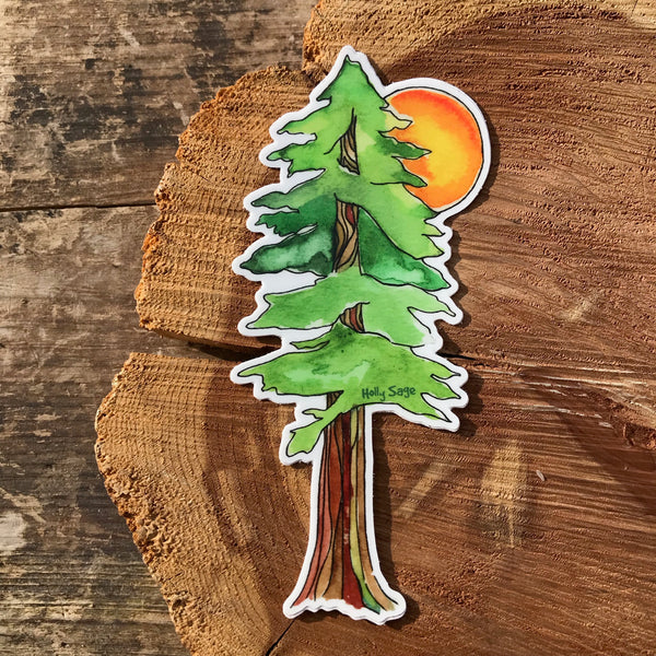 Sun behind redwood tree sticker