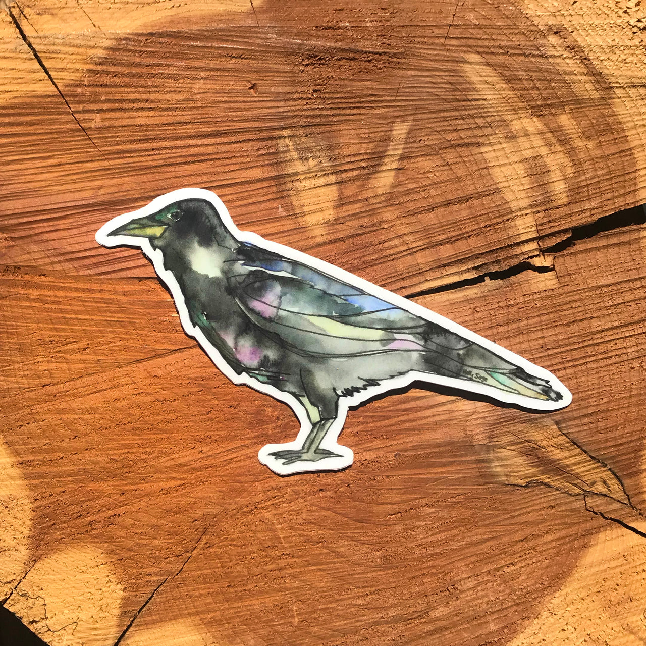 Beautifully painted raven sticker