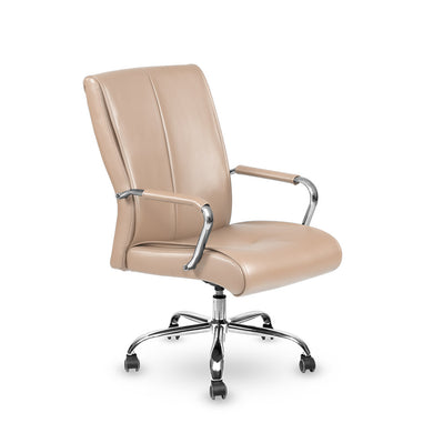 Customer Technician Reception Office Chair - 5 Colors - Stool