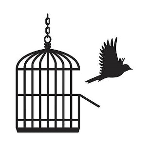 BIRDS DON'T SING IN CAGES