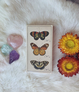 'Butterfly' Ritual Matchbox