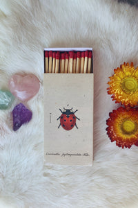 'Lady Bug' Ritual Matchbox