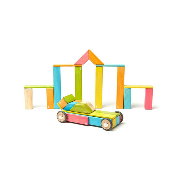 Tegu Classic Magnetic Wooden Block Set 42-Piece