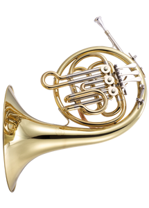 Horn in F- student level  JP165