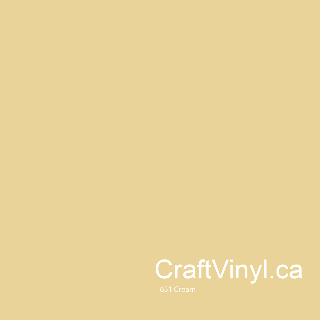 Oracal 651 Glossy Cream Vinyl  #023