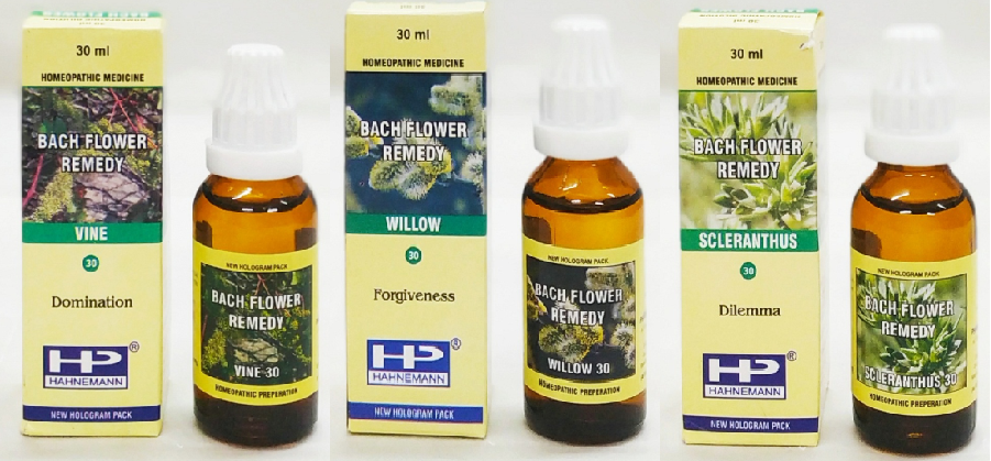 BFR Mix Vine, Willow, Scleranthus for Quitting Smoking