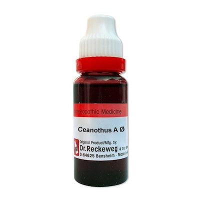 Ceanothus Americanus Homeopathy Mother Tincture Q