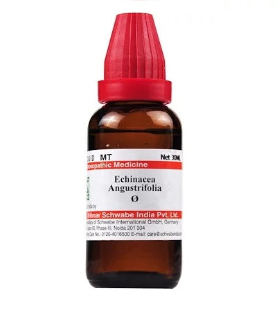 Echinacea  Angustifolia Homeopathy Mother Tincture Q