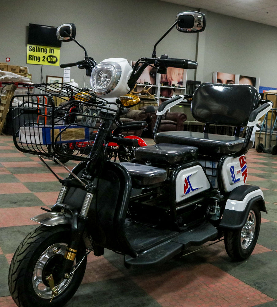 Brand New 500 Watt Power Trike