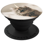 Unicat, PopSockets