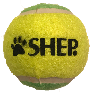 Squeaker Tennis Ball