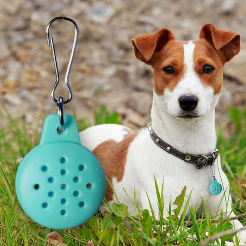 ESSENTIAL OIL PET DIFFUSING COLLAR PENDANT (for Dogs & Cats) Crystal