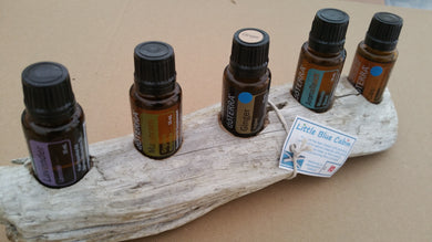 5 Hole Driftwood essential oil stand, dried, scrubbed, cleaned and prepared