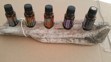 5 Hole Driftwood essential oil stand, dried, scrubbed, cleaned and prepared (c)
