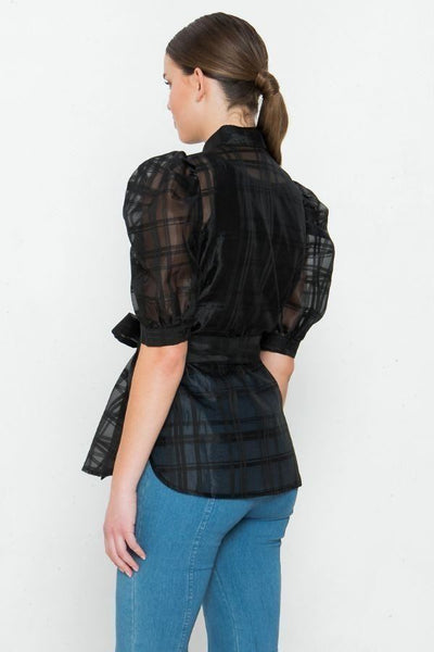 A See-thru Mini Length Organza Top