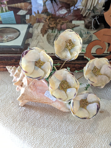 seashell with metal flowers