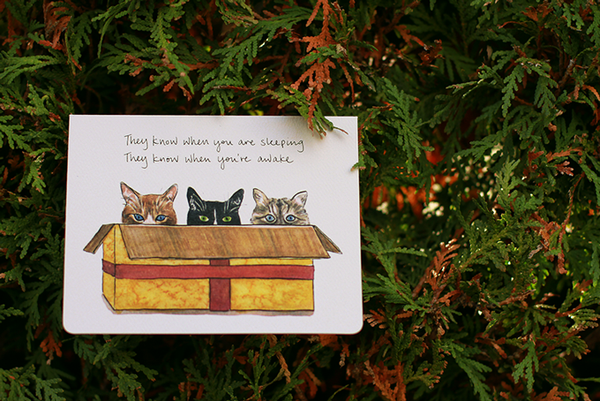 Cats in a Box Card Set of 8