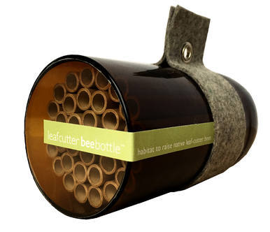 Leafcutter Native Bees Urban Bee House