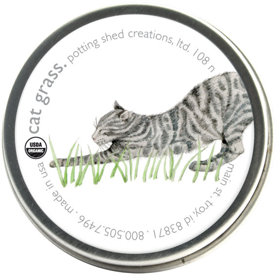 Cat Grass Wheat - Pet Garden Sprinkles Seed Collection