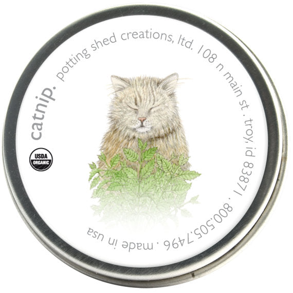 Catnip - Pet Garden Sprinkles Seed Collection
