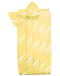 Sunbeam Striped Satin Cummerbund