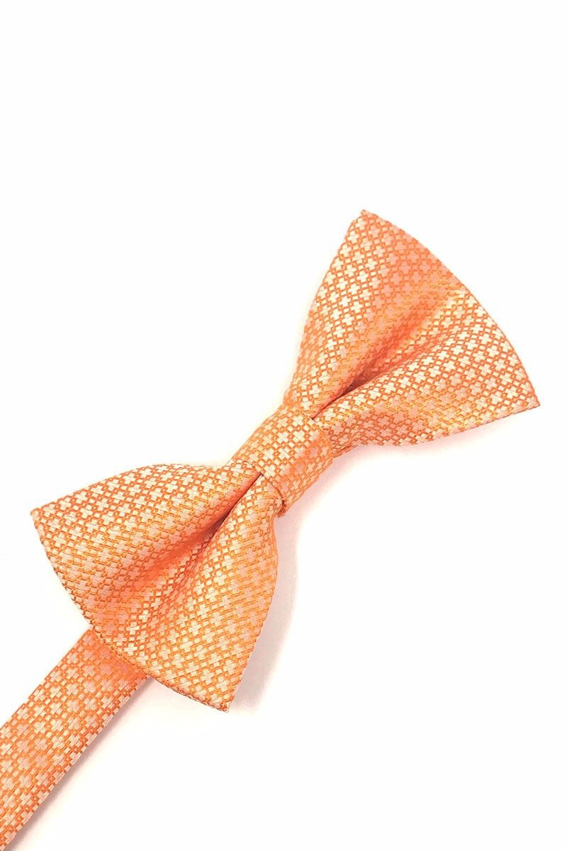 Orange Regal Bow Tie