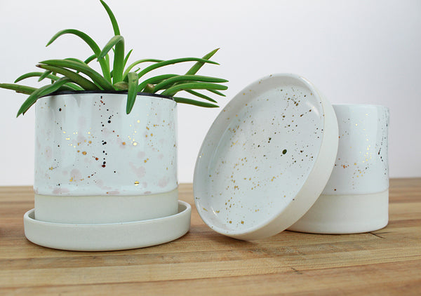 4 inch Cylinder Planter with Saucer - Gold Splatter