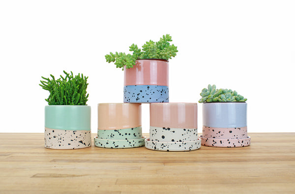 4 inch Dipped and Dotted Cylinder Planter with Saucer