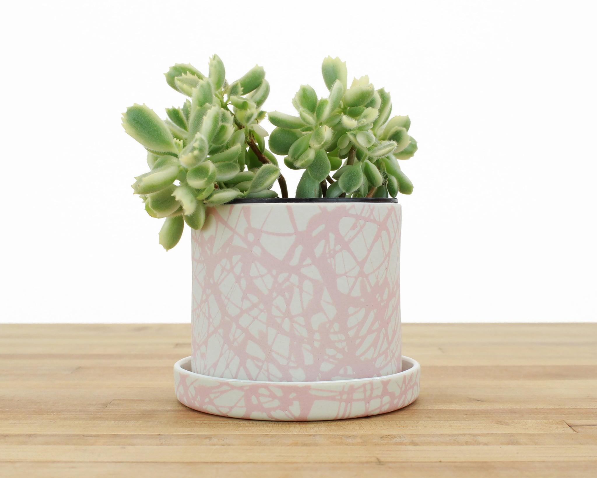 4 inch Cylinder Planter with Saucer - Blush Splatter