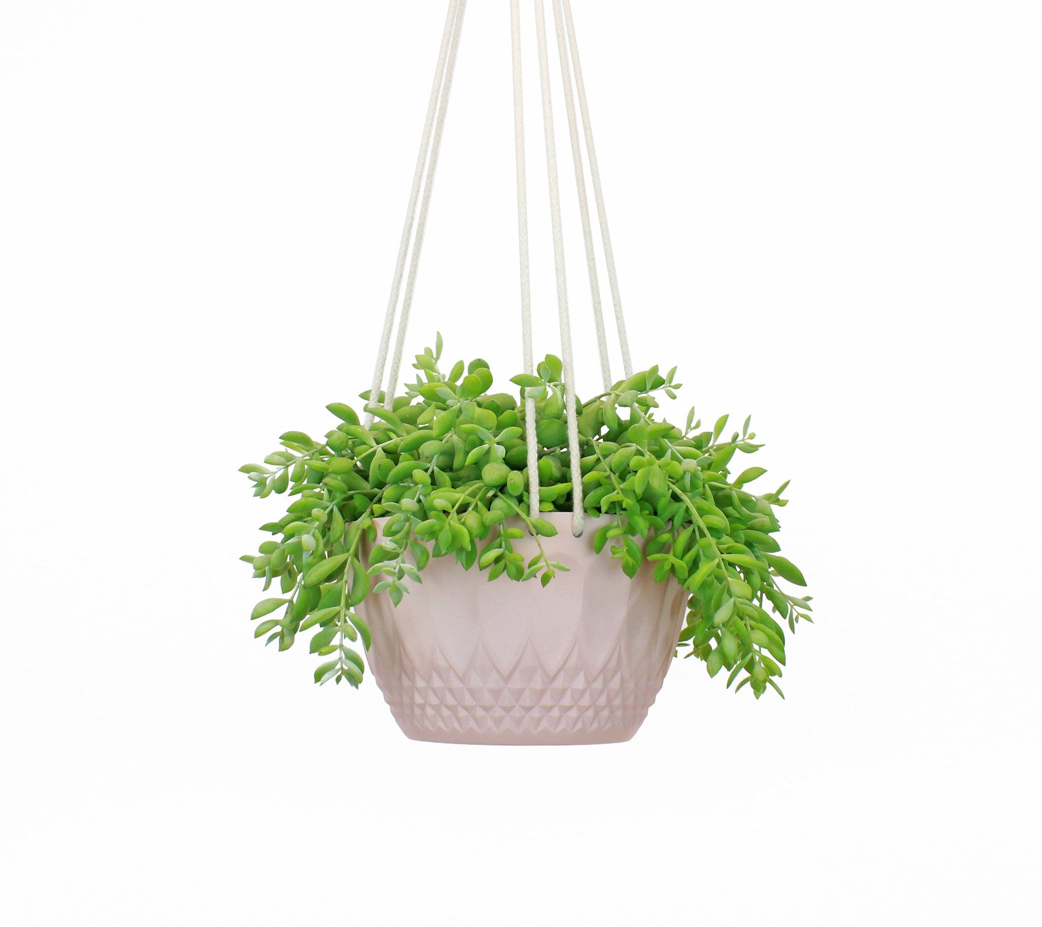 Large Hanging Planter