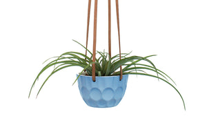 Hanging Planter - Mini