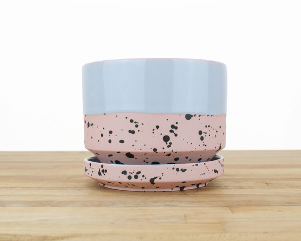 Seconds - 6 inch Planter - Dipped and Dotted Periwinkle over Blush