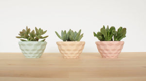 Mini Faceted Planter
