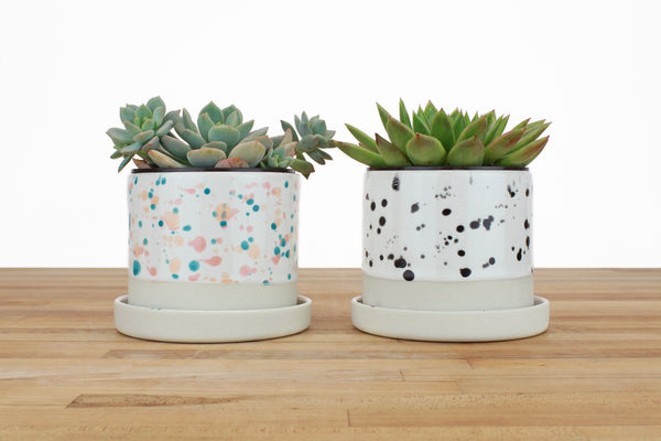4 inch Spotted Glaze Cylinder Planter with or without Saucer
