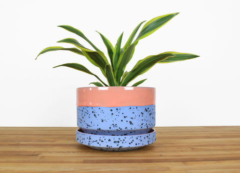 8 inch Cylinder Planter - Dipped and Dotted Pink over Sky