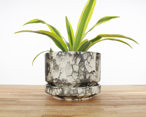 8 inch Cylinder Planter - Black Bubble