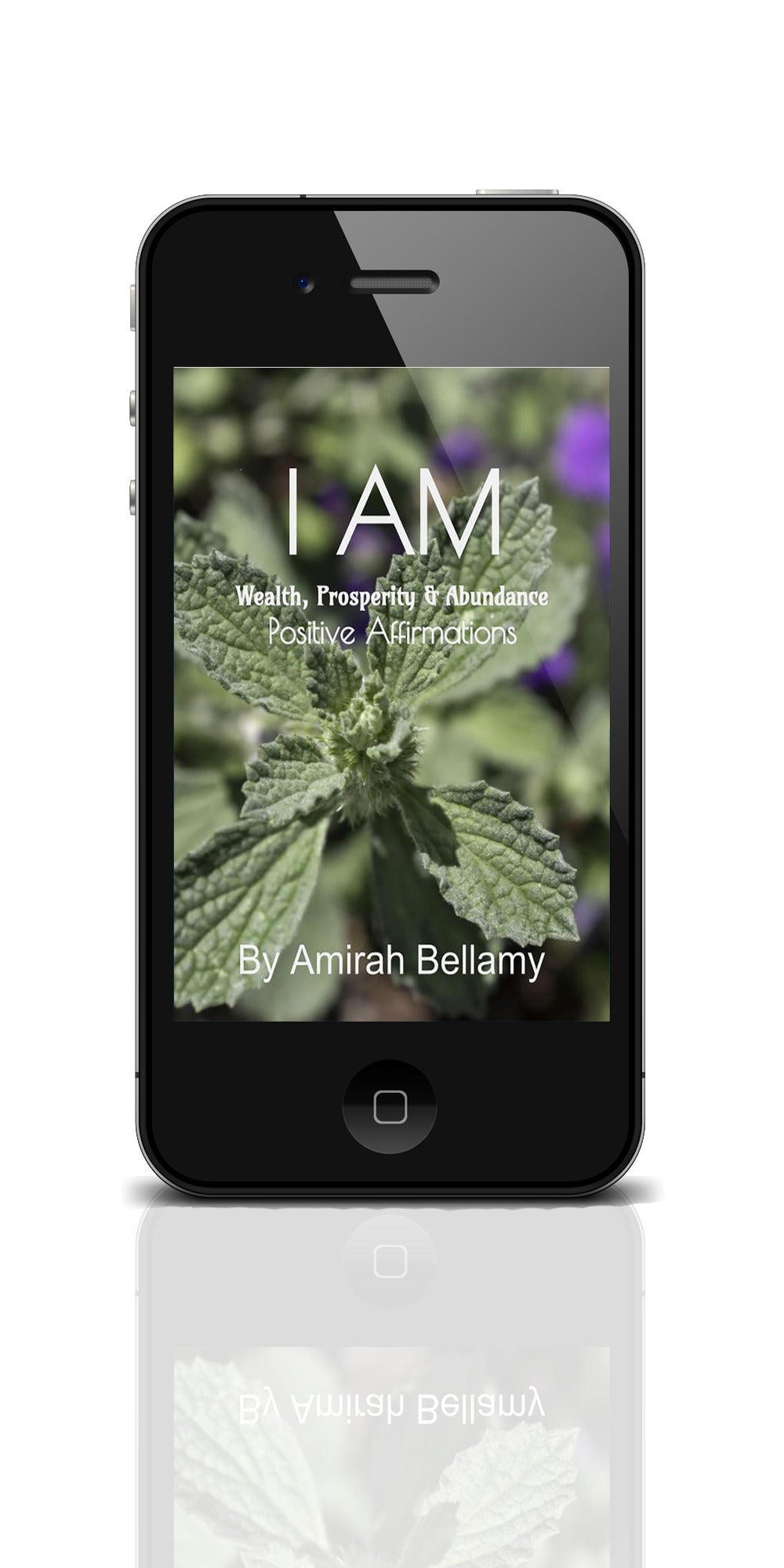 I AM Wealth, Prosperity & Abundance Positive Affirmations