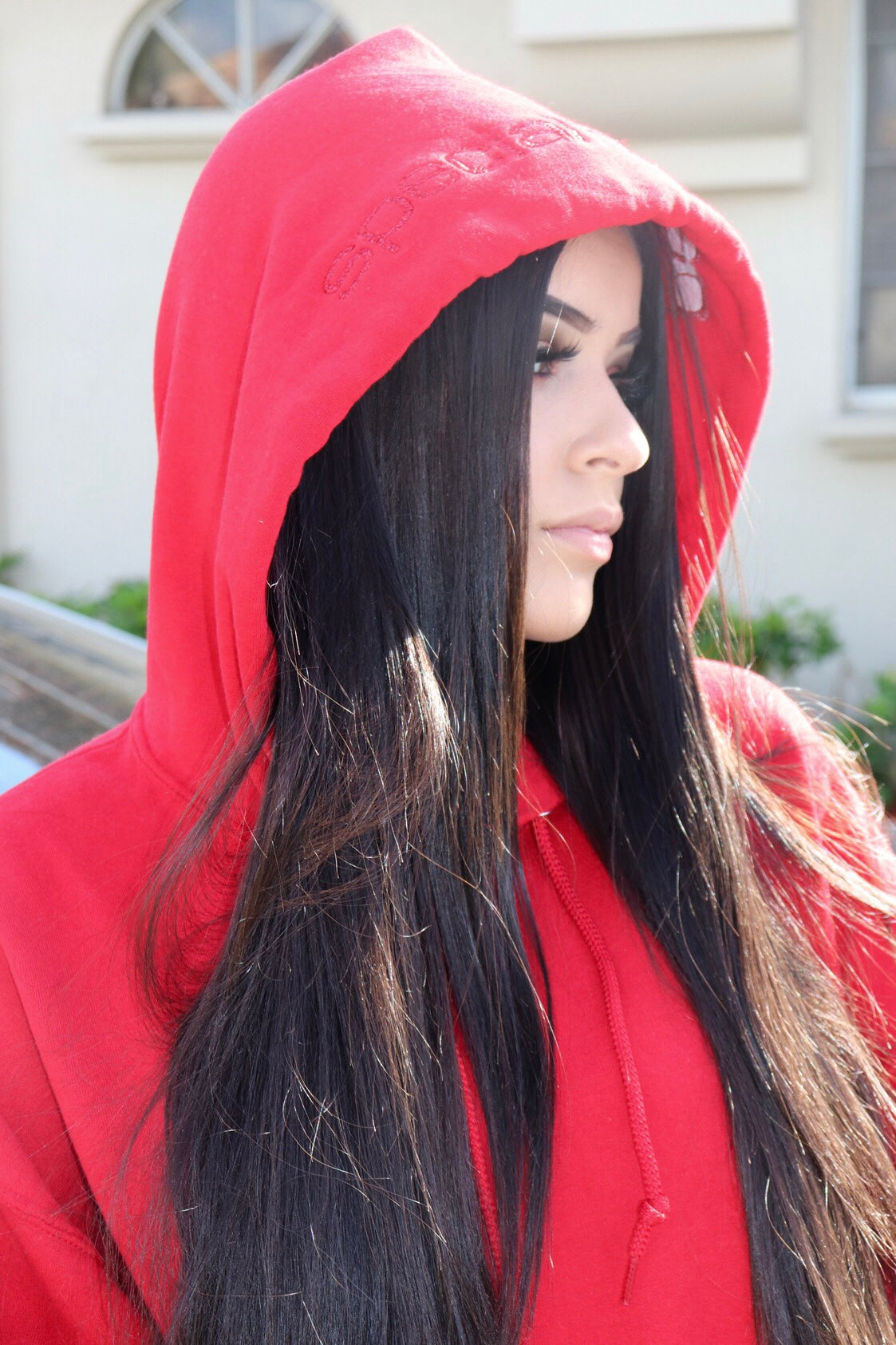Red Hoodie with Red Logo