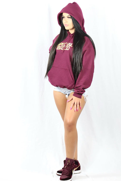 Maroon Hoodie with Gold Logo