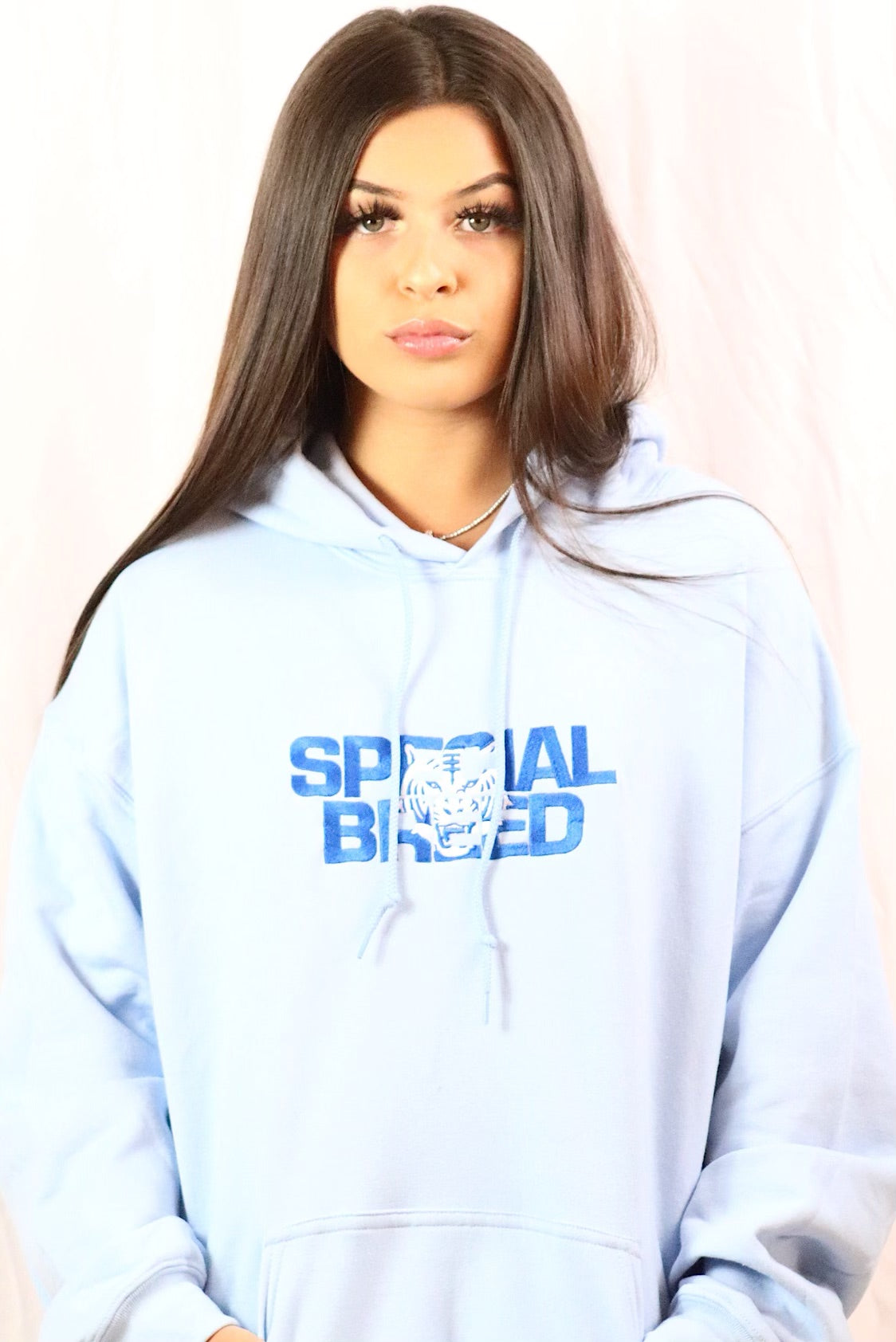 Baby Blue Hoodie with Block Logo