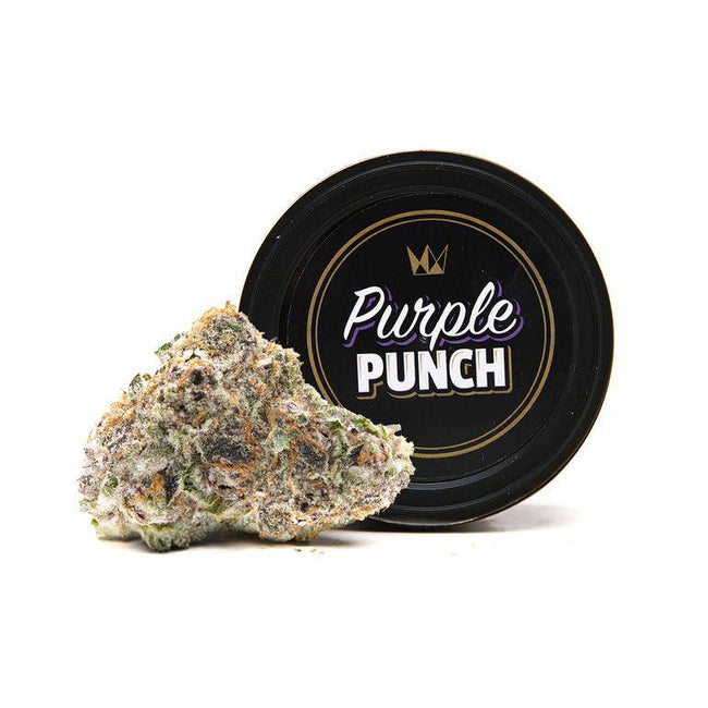 West Coast Cure Purple Punch - The Balloon Room